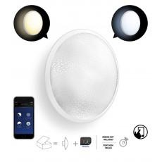 Philips Hue White ambiance Phoenix Aplique LED